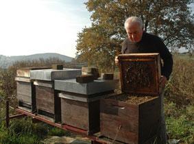 Les ruchers des 3 vallées